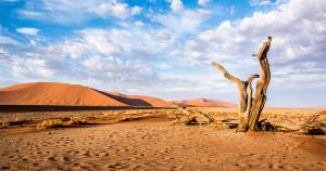 A világ legkülönlegesebb sivatagjai