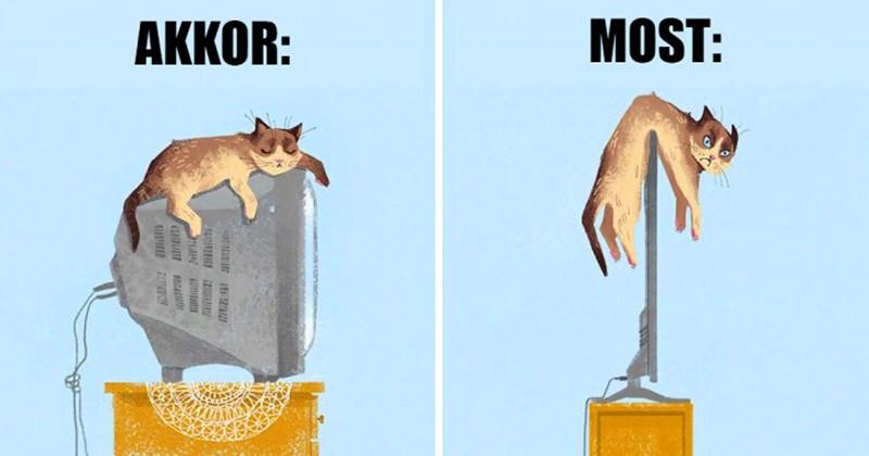 11 kép, amely megmutatja, hogyan változtatta meg a technológia a cicák életét